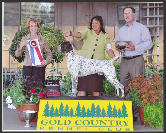 Gold Country Kennel Club Dog Show